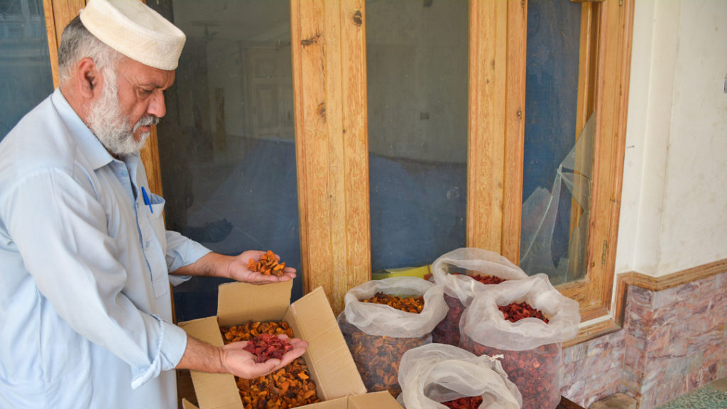 Dried fruit is more portable and durable